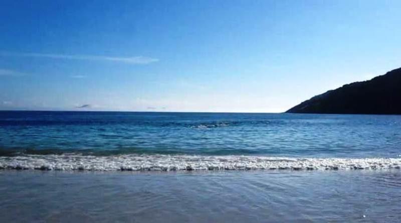 Այս տեսանյութի հեղինակը սովորականի պես հանգստանում էր օվկիանոսի ափին, երբ հանկարծ…